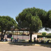 Fiestas de Carrascal de Barregas 2016 #12