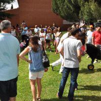 Fiestas de Junio #3