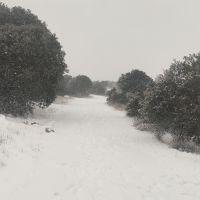 Temporal de nieve #2