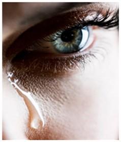 Las mujeres rurales víctimas de violencia de género cuentan con el apoyo de la Asociación Afammer
